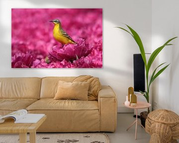 Gelbe Bachstelze (Motacilla flava) im Blütenmeer von Beschermingswerk voor aan uw muur