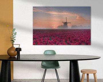 Blumenzwiebelfeld im Morgennebel von John Leeninga