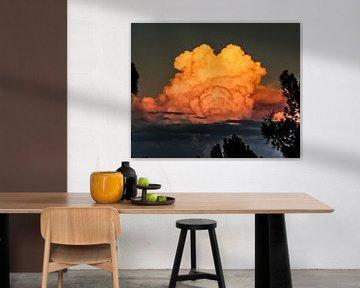 Kleurwolk van Jonathan Verhoeven