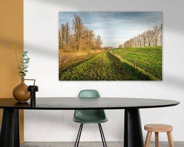 Paysage néerlandais au pied de l'Amerdijk sur Ruud Morijn