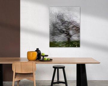 Herfst Boom in Abstractie van Diana Kievit