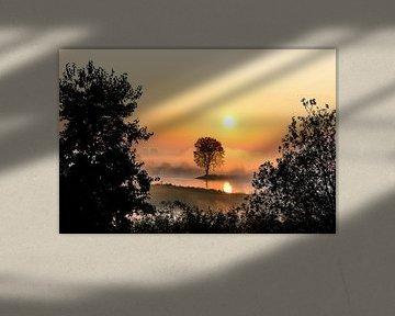 Sonnenaufgang von Tina Linssen