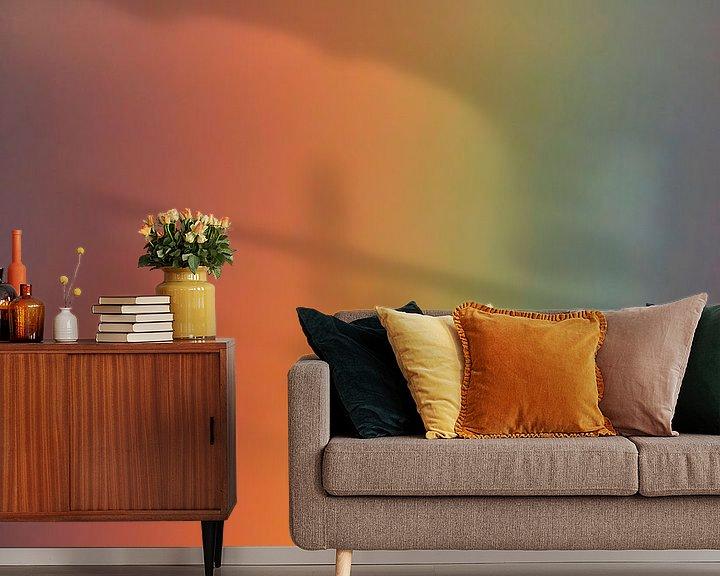 Sfeerimpressie behang: Aalscholver met regenboog van Beschermingswerk voor aan uw muur