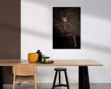 Vintage Fine Art stattliche Porträt Katze von Nikki IJsendoorn