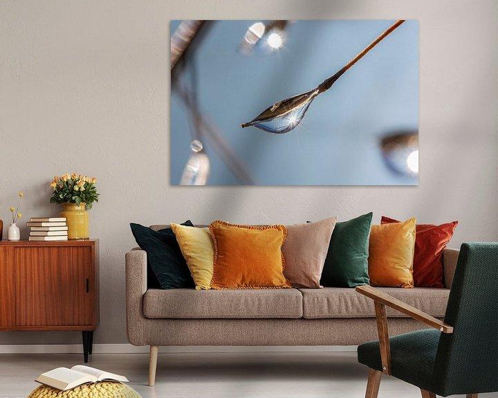 Sfeerimpressie: Een dauwdruppel hangt aan een tak van Thomas Heitz