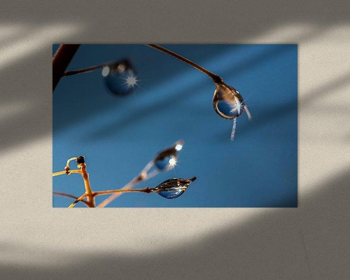 Sfeerimpressie: Dauwdruppels die aan een plant hangen van Thomas Heitz