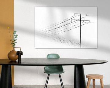 Veel vogels verzamelen zich op een elektriciteitskabel van Thomas Heitz