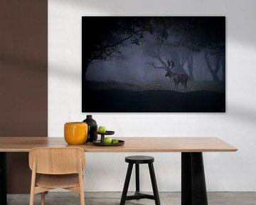 Damhirsch in einem dunklen, nebligen Märchenwald. von Albert Beukhof