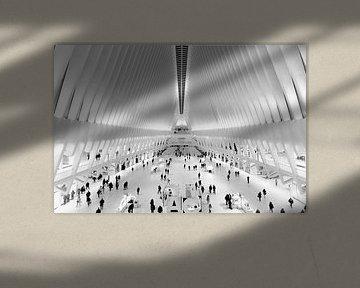 Oculus Station New York van Dennis Donders
