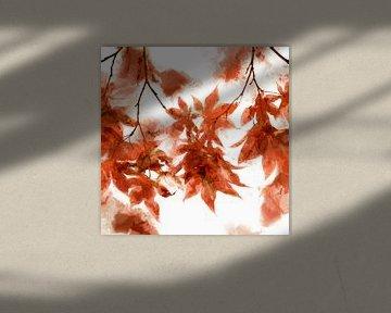 Bladeren van Andreas Wemmje