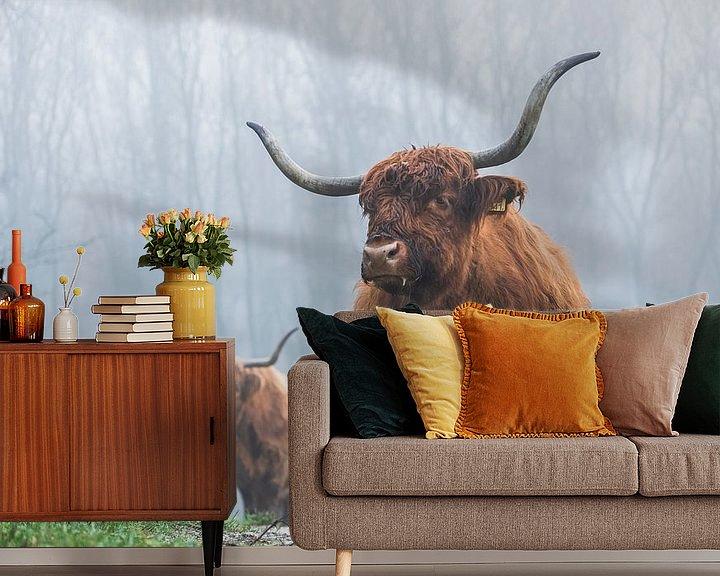 Sfeerimpressie behang: Schotse hooglanders mist van Bart Lindenhovius