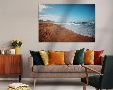 Fuerteventura von Celine Warta