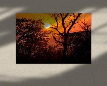 Sonnenuntergang in Südafrika von Puck Bertens
