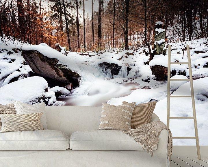Beispiel fototapete: Ilsetal im Winter von Oliver Henze