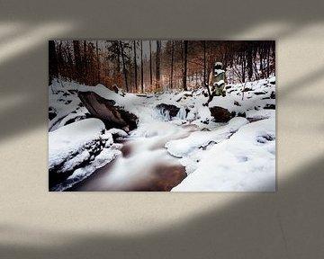 Ilse-vallei in de winter van Oliver Henze
