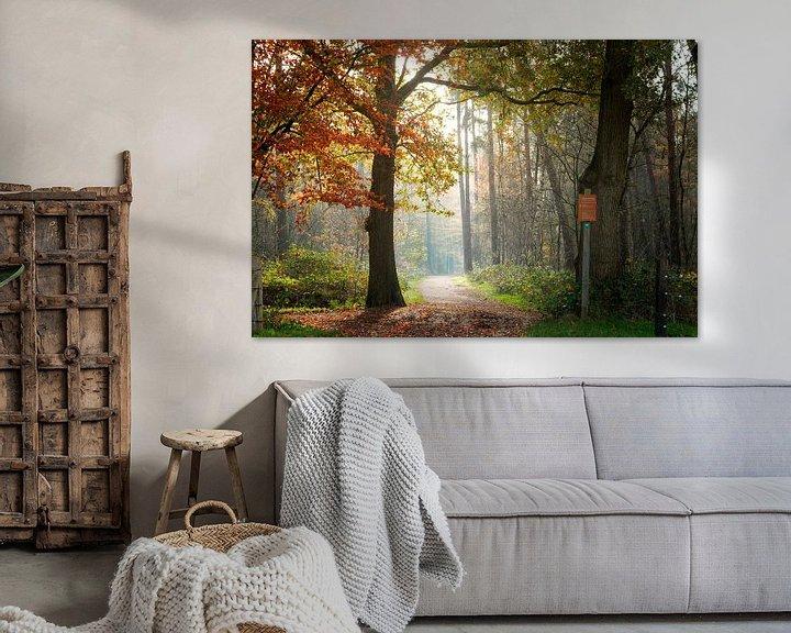 Sfeerimpressie: Into the Light van Tashina van Zwam
