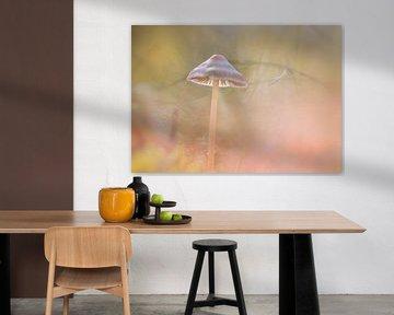 paddenstoel hoedje van natascha verbij