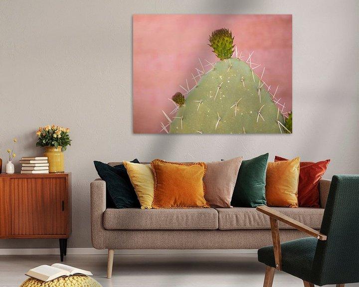 Sfeerimpressie: Cactus op een dakterras in Marrakesh, Marokko van Teun Janssen