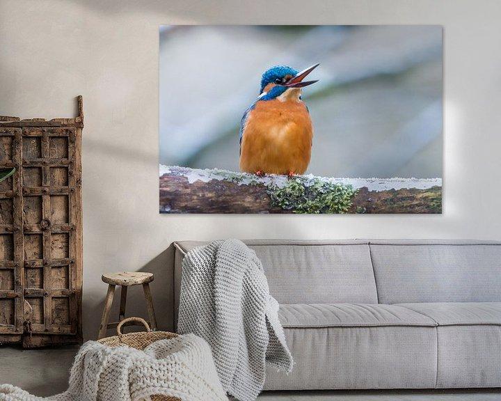 Sfeerimpressie: Ijsvogel van Adriaan Westra