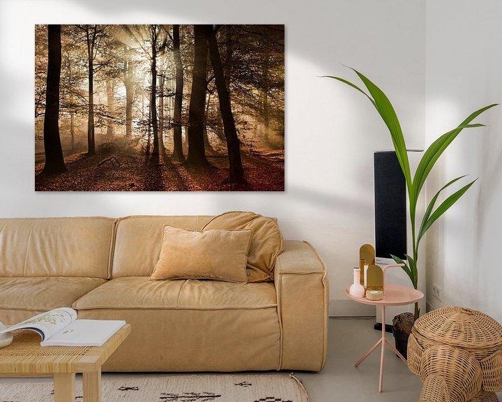 Sfeerimpressie: Herfst in het bos van Afke van den Hazel