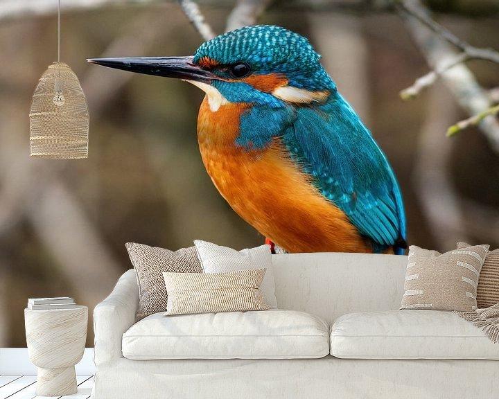 Sfeerimpressie behang: IJsvogel in de Weerribben wieden van Merijn Loch