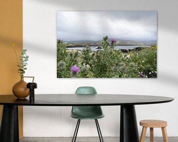 Distel landschap van Youp Heinhuis