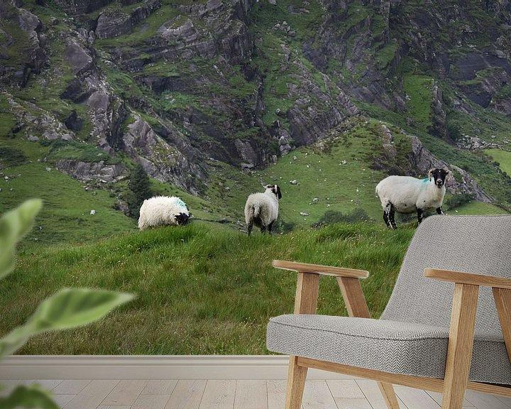 Beispiel fototapete: Schafe in den Bergen von Youp Heinhuis