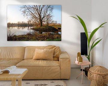 Een fotosafari door Knoops Park in Bremen aan de rivier Lesum van Matthias Korn