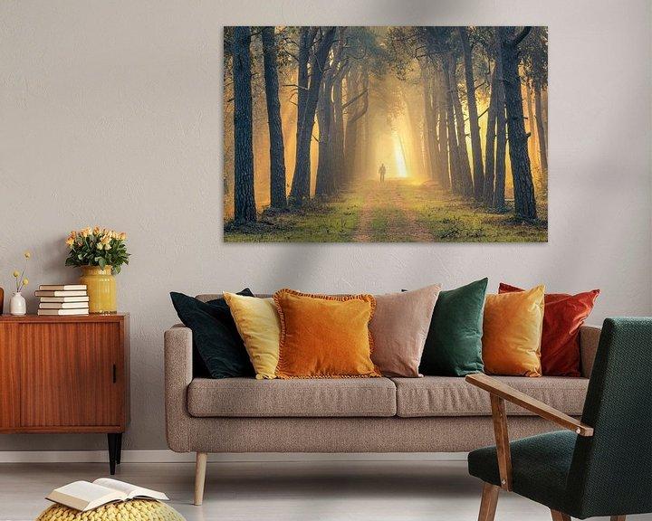 Sfeerimpressie: Wandelaar in mistig bos bij zonsopkomst (Utrechtse Heuvelrug, Nederland) van Sjaak den Breeje Landschapsfotografie