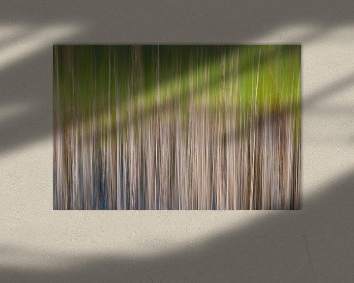 Sfeerimpressie: Kleurrijk riet van Mark Bolijn