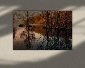 Ochtendnevel op het meer van Dieter Ludorf