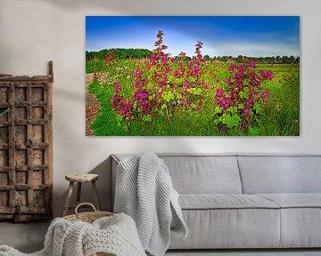 Rosa Straßenrandpflanzen von Digital Art Nederland