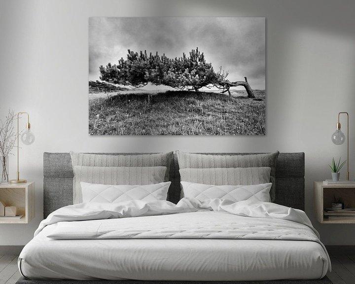 Beispiel: Dünenlandschaft mit einsamer Kiefer von Floris Kok