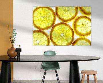 Collage aus Zitronenscheiben mit einem weißen Hintergrund. von Carola Schellekens