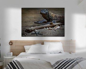 Komodowaran von Evi Willemsen