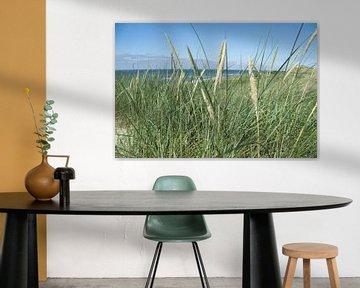 wogendes Strandhafer von Hanneke Bantje