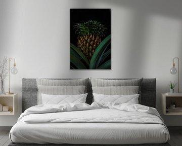 Ananaspflanze (1) von Rob Burgwal