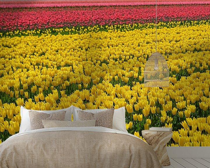Beispiel fototapete: Tulipfield von JTravel