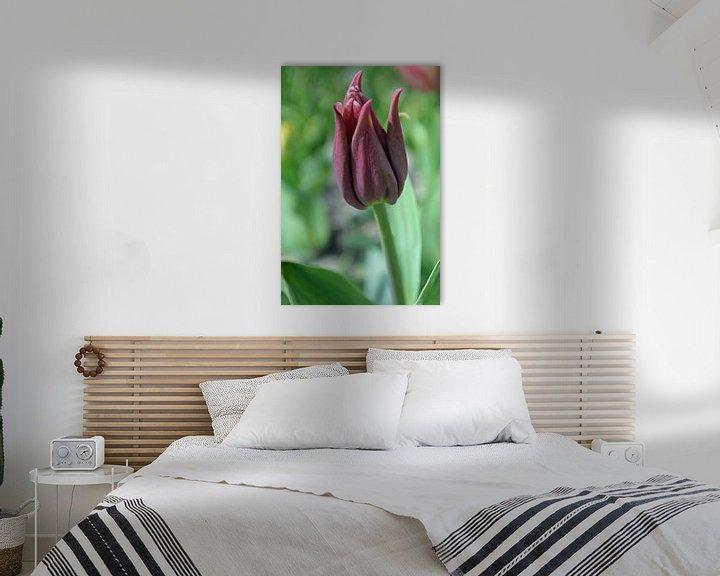 Beispiel: Tulpe (stehend) von JTravel
