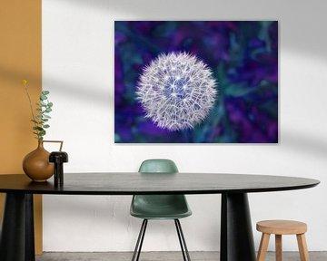 Blueish Fluff (Pluizenbol Paardenbloem in Blauw) van Caroline Lichthart