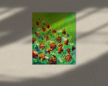 Rote Mohnblumen 672020 von pol ledent