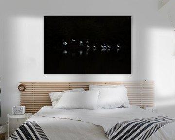 Lichtpuntjes in het donker van Danny Slijfer Natuurfotografie