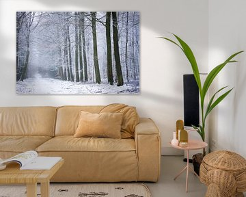 Winter im Wald von Karijn | Fine art Natuur en Reis Fotografie