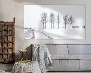Niederländische verschneite Landschaft mit Straße und Bäumen von Hilda Weges