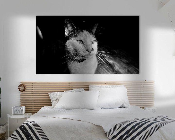 Beispiel: Schwarze und weiße Katze von Kicky Vromans