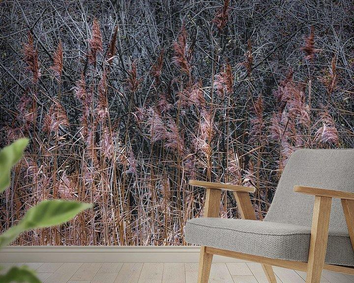 Sfeerimpressie behang: De eenvoud van riet van jowan iven