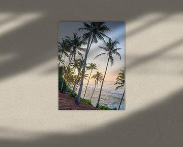 Palmen und Surf-Vibes bei Sonnenaufgang in Mirissa von Teun Janssen