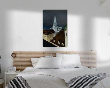 Stephansdom In De Avond van Twan Thimister