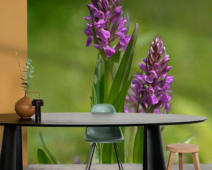 Sfeerimpressie behang: Orchidee van Bernhard Kaiser
