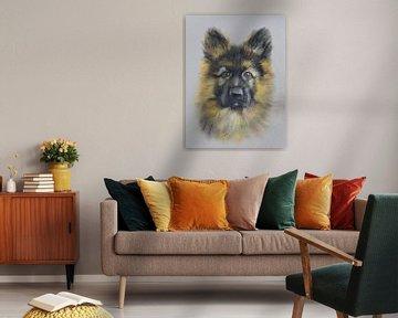 Schäferhund Portrait | Deutscher Schäferhund von Henriëtte Mosselman